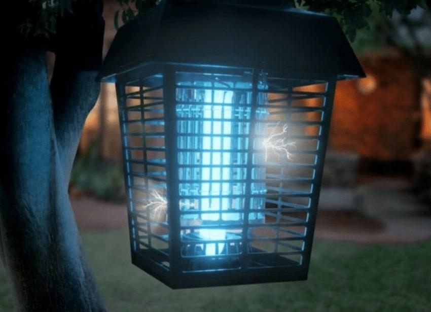 Beste muggenlamp